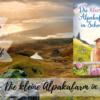 Blue Skye - Die kleine Alpakafarm in Schottland